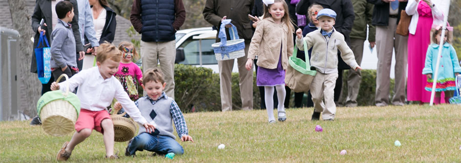 Welvista Easter Egg Hunt